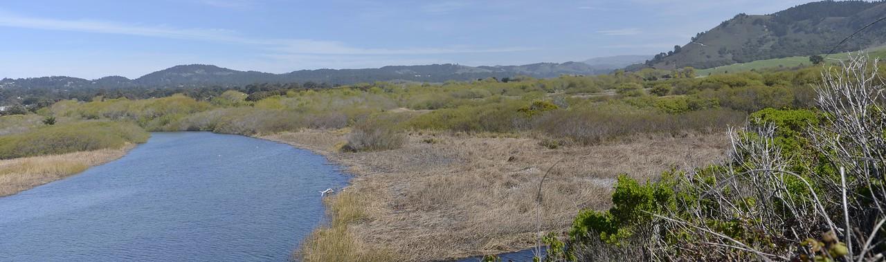 Carmel River Wetlands